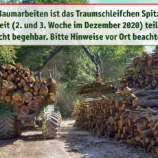 Baumarbeiten Spitzer Stein